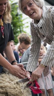 Schaapscheerdersfeest 2017